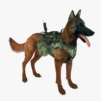 Military Service Dog 1 (Mahogany)