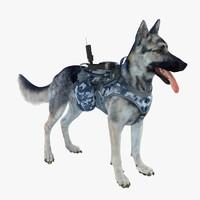 military dog 4 max