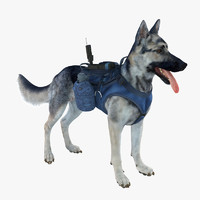 3d military dog