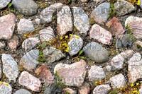 Rocky ground 1