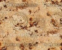 Sand 51