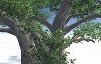 3d model of tree set