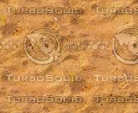 Sand 62
