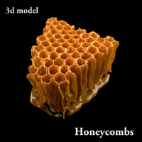 3d honey modeled honeycombs model
