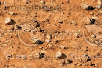 Sand with stones 30