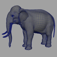 3d model of basemesh elephant uvs