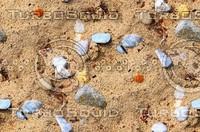 Sand with stones 8