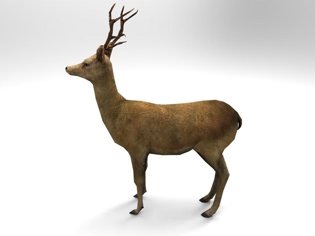 Deer01.325.jpg