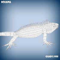 3d model base mesh iguana lizard