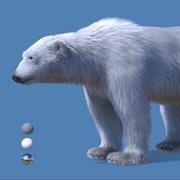 maya realistic polar bear