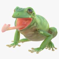 3d australian green tree frog