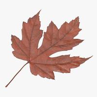 3d orange maple leaf
