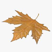 yellow maple leaf 3d model