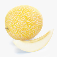 melon photorealistic 3d model