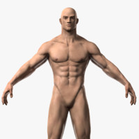 max realistic male character body