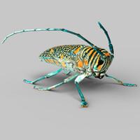 3dsmax zographus regalis centralis