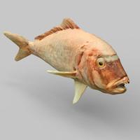 3d prehistoric fish