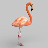fbx pink flamingo
