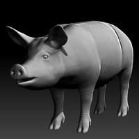 3d realistic zbrush pig