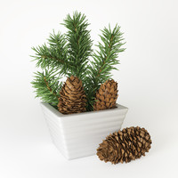 christmas fir branches cones 3d model