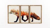 Frames 'Fox'