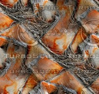 Palm tree bark 32