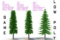 ready pine 3d model