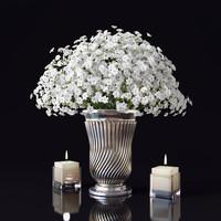 bouquet gypsophila vase 3d max