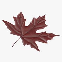 red maple leaf 3d model