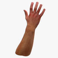 3d model human hand arm