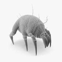 dust mite 3d model