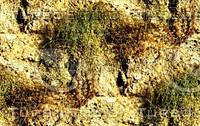 Stone wall 79