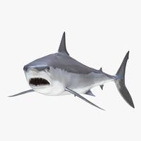 shortfin mako shark pose 3ds