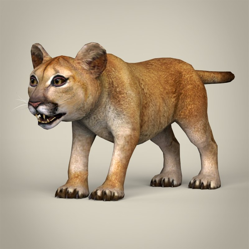 Realistic Baby Lion 3d Max