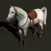 3d horse animation model