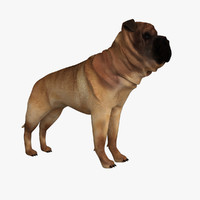 3d ori pei dog model
