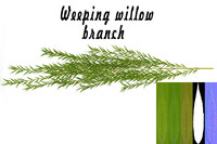 3d weeping willow branches