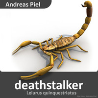 3d model deathstalker scorpion leiurus
