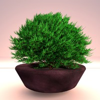 red shrub 3d model