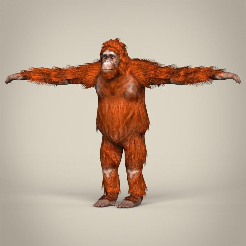 Low Poly Realistic Orangutan_01.jpg