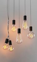 bulbs 3d model