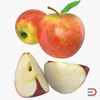 apple fruit 3d obj