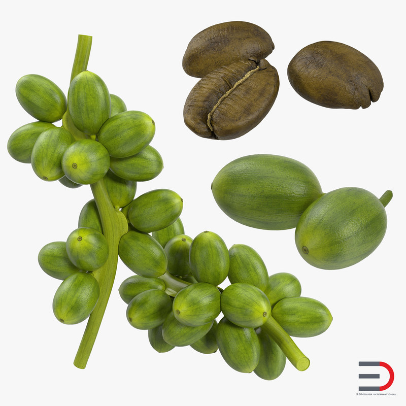 Green Coffee Collection 3d models 00.jpg