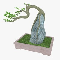 3d max bonsai tree