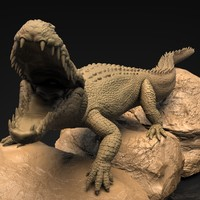 Realistic Alligator (Zbrush HD)