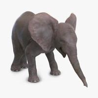 3d baby elephant pose 3