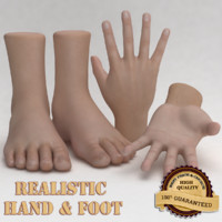 Realistic Hand and Foot
