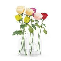 3d roses red glass vases