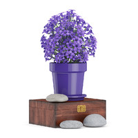 purple flowers wooden box 3d fbx