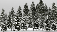3d model 20 winter picea albea